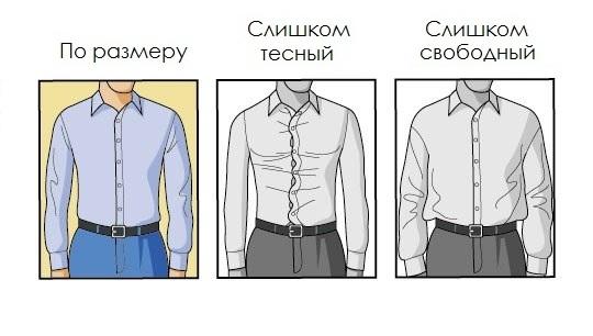 рубашка по размеру в торсе
